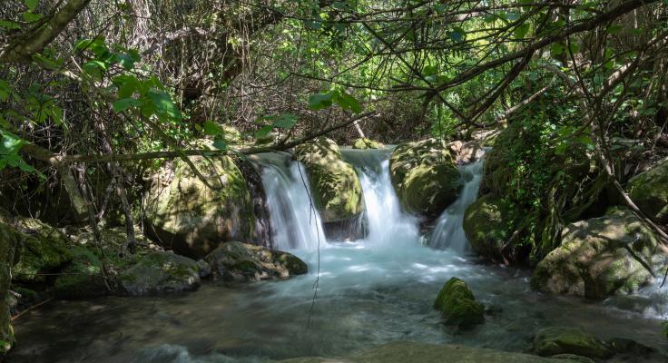 wandelroutes sierra grazalema majaceite rivier